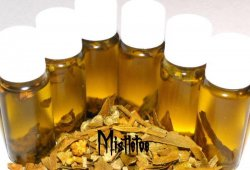 Mistletoe Magickal Oil + Herb / True Love
