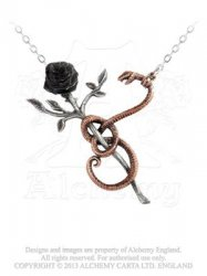 A Rose for Eve Necklace