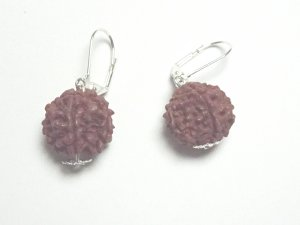 Rudraksha Bohdi Nut Earrings Sacred Seeds Of Tibet