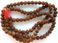 Mala / Rudrax Rudraksha Prayer Beads Necklace