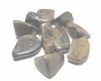 Stromatolite Tumbled Gemstone - various sizes available