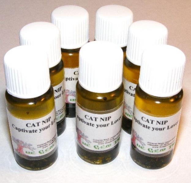 Catnip Magickal Oil + Leaves / Captivate Your Lover