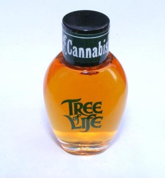 Cannabis Tree of Life Fragrance Oil
