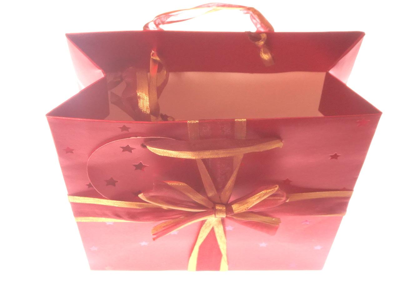Stylish Square Oranza Ribbon Gift Bag