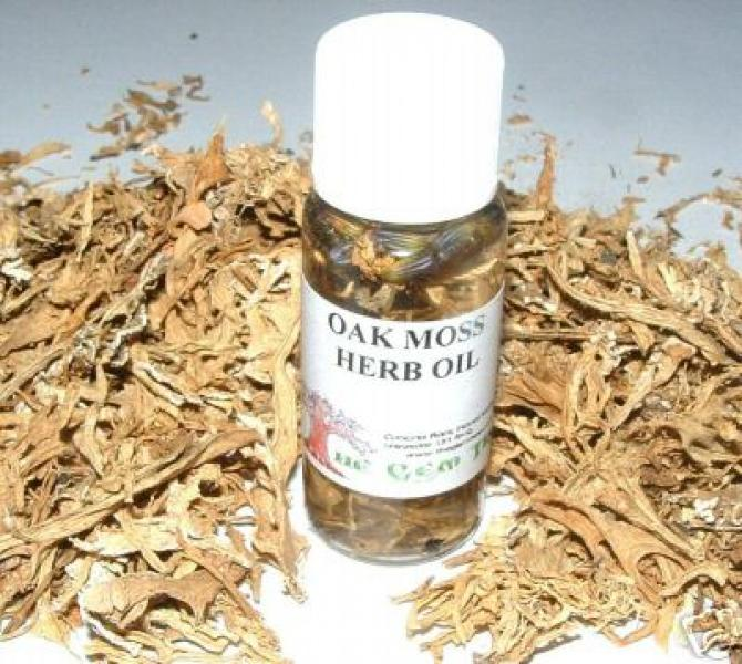 Oakmoss Oil + Herb Magickal Oil Made The Old Way