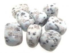 Sesame Jasper Tumbled Gemstone