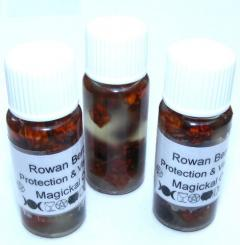 Rowan Berry Magickal Oil Protection + Visions